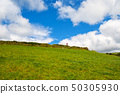 Typical green Irish country side with blue sky and 50305930