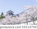쿠 다니 성 성 벚꽃 봄 만개 2019 년 50314740