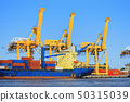 industrial port with containers 50315039