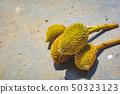 Fresh Mini Durian on ground  50323123
