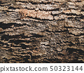 cracked earth texture.old wood background  50323144