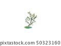 Art color drawing little tree illustration  50323160
