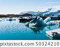 요크 앤젤레스 아ゥ 르 로ゥ 바겐 빙하 호수의 새들 50324210
