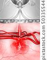 血液 血 傳染病 50335544