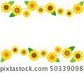 Sunflower 28 50339098