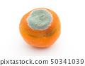 Penicillium Italicam infected with Mandarin oranges Blue mold Blue mold Blue mold Orange 50341039