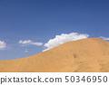 사막 50346950