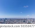 東京的城市景觀17 50350477
