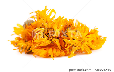 Dried calendula flowers isolated on white background. Medicinal herbs. 50354245