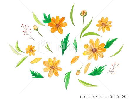노란색 꽃 수채화 50355009