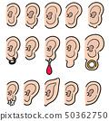 vector set of ear 50362750