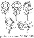 vector set of sunflower 50363089