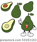 vector set of avocado 50363163