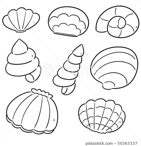 vector set of sea shell 50363337