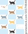 가로 고양이 다양 50374646