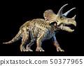 Triceratops with skeleton 3d rendering on black 50377965