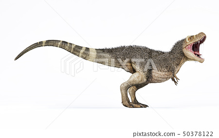 T-rex with feathers 3d rendering side view. 50378122