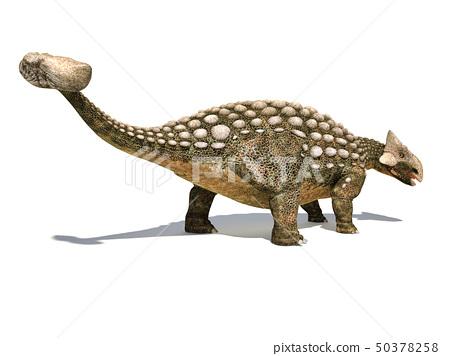 Ankylosaurus dinosaur isolated on white 50378258