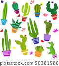 set of illustrations of cute cactus and succulents 50381580