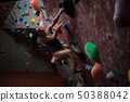 Athletic woman practicing in a bouldering gym 50388042