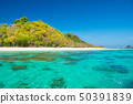 Beautiful landscape of blue sea and tropical 50391839