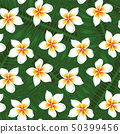 Many plumeria and leaves background seamless 50399456