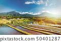 Bali Rice Terraces. 50401287