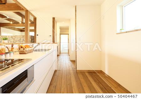 宠物生活设计师的房子的时尚厨房 50404467