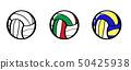 volleyball 50425938