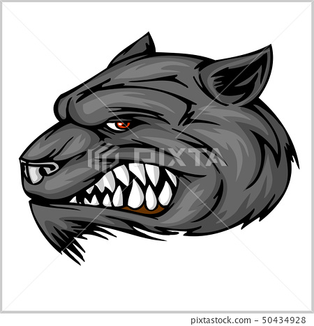 Wolf head mascot illustration 50434928