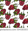 Vector Raspberry healthy food isolated. Red and green engraved ink art. Seamless background pattern. 50438303