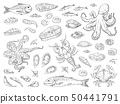 Hand drawn seafood. Octopus squid crab oyster and marine fish sketch drawing for restaurant menu 50441791