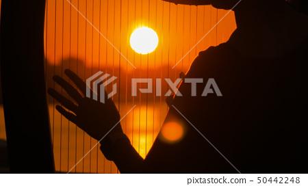 Woman playing harp at sunset 50442248