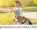 Little Caucasian girl walks with her dog in the 50442389