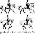 riding horses sketch illustration set 50442572