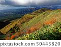 단풍 나스 능선에서 볼 흰색 사사 야마의 산맥 50443820