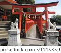 Fukutoku Inari Shrine Senbon Torii 50445359