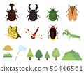 여름 곤충 소재집 1 50446561