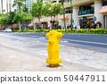 國外消防栓(夏威夷) 50447911