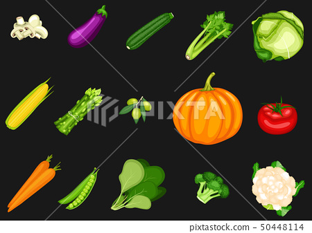 Collection of vegetables on a black background 50448114