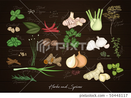 Collection of spices and herbs 50448117