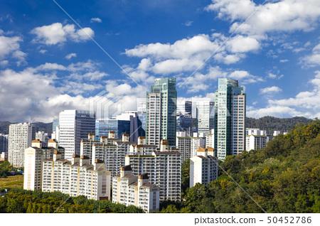 한국,도시,건물 50452786