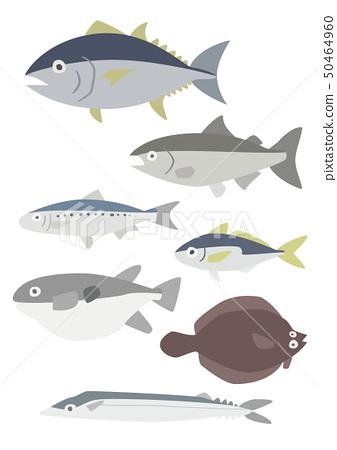 바다의 생선 세트 50464960