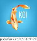 Oriental White Koi Fish With Orange Spots Vector 50489170