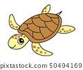 바다 거북 sea turtle 50494169