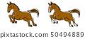 馬跳 50494889