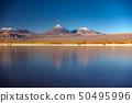 Licancabur volcano and Cejar salt lake in Atacama 50495996