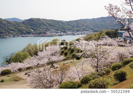 公園和瀨戶內海 50522399