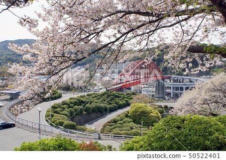 Soundo Ohashi和Sakura 50522401