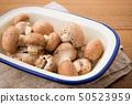 브라운 버섯 50523959